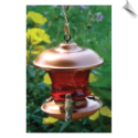 "Brushed Copper & Ruby Glass Hummingbird Feeder <br><span style=""color:#1954e9;"">New Item!</span>"