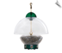 Droll Yankees Big Top Bird Feeder (Green)